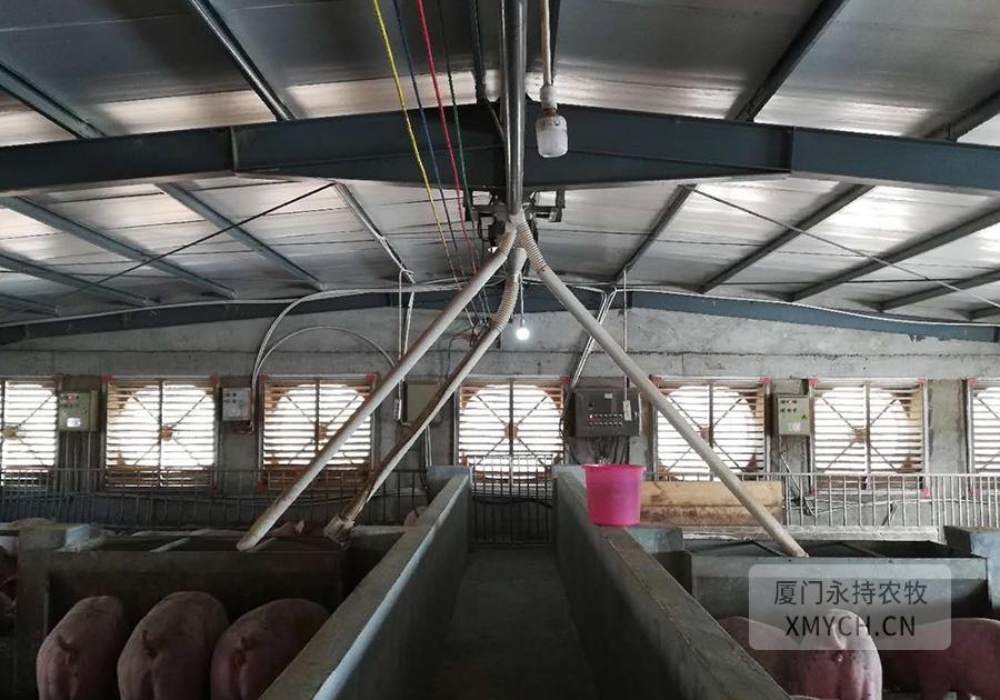 负压风机猪场降温工程案例