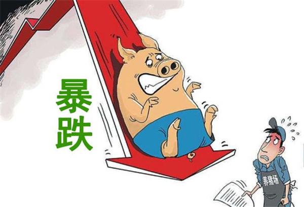 """3月19日:惨不忍睹,猪价再度""""狂跌"""",""""13时代""""又失守了"""
